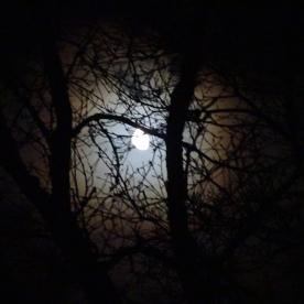 La lune : al loar.
