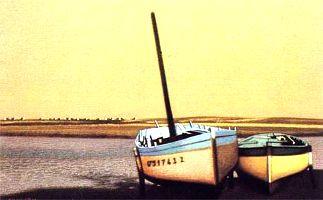 Barques1.jpg
