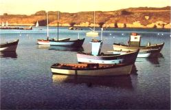 Barques2.jpg